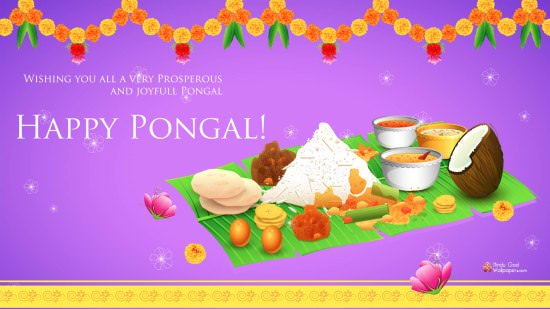 pongal images 2